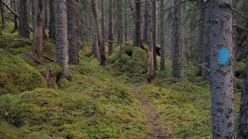 rettersteder i norge